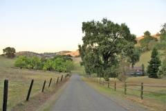 amador-wine-country-getaway-7